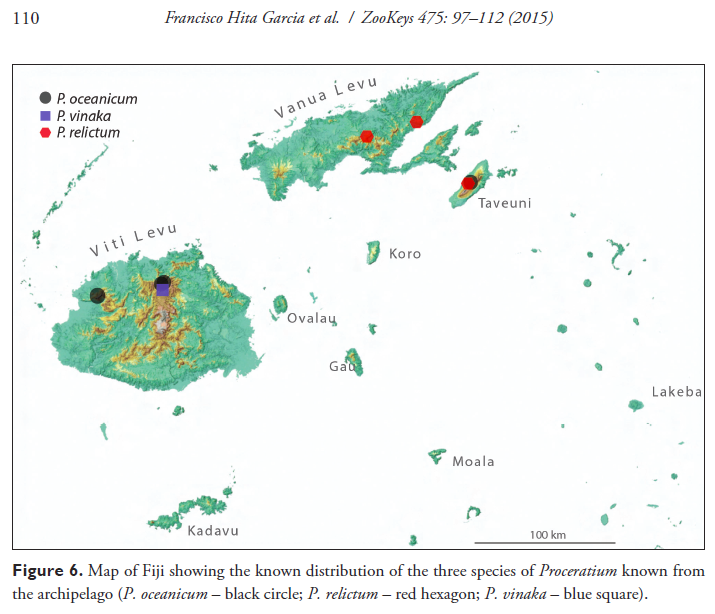 Fiji eli m sarnat distribution map of fijian proceratium species gumiabroncs Image collections